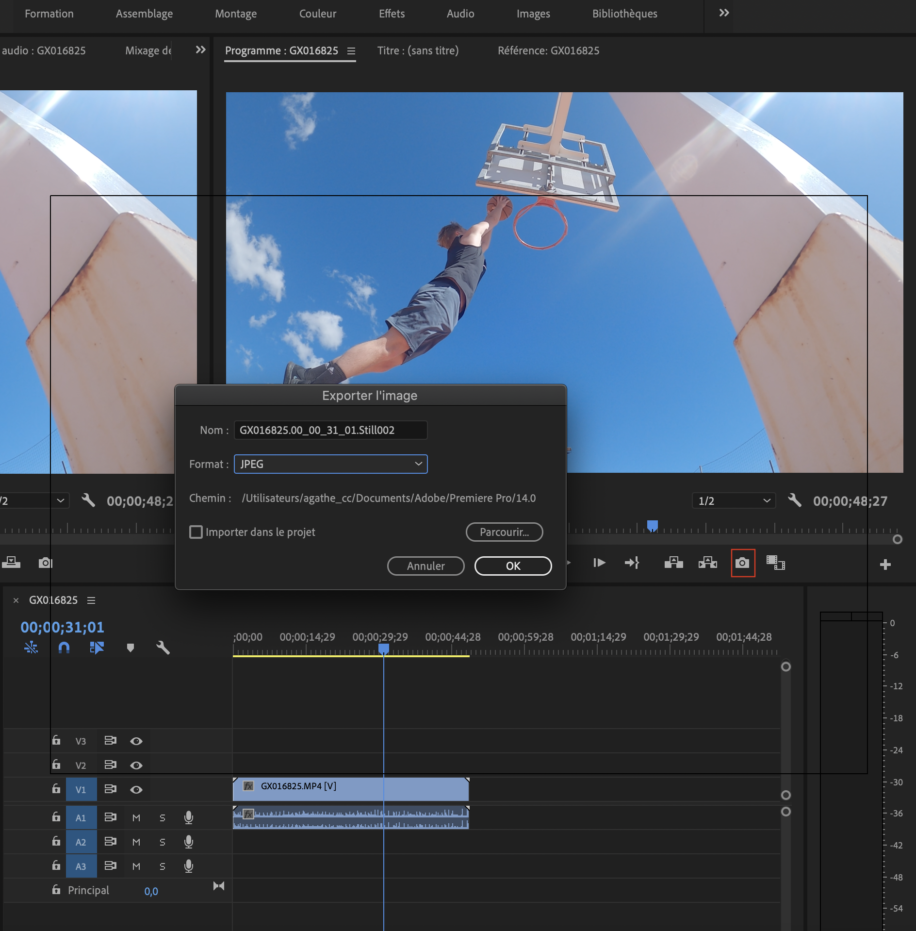 Capture d'écran Adobe Première Pro
